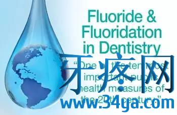 防蛀牙膏:无氟才安全?无氟也有效?加钙可补钙?