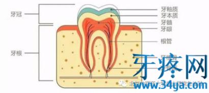 牙痛怎么办?